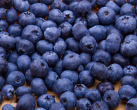 Fresh blueberries background pattern Stock Image