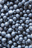Fresh blueberries background Stock Photography
