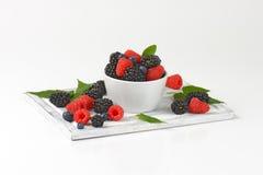 Fresh blueberries, blackberries and raspberries Royalty Free Stock Photos