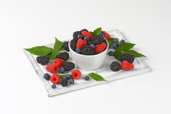 Fresh blueberries, blackberries and raspberries Stock Photography