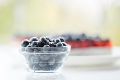 Fresh blueberries and blueberry pie. Stock Images