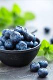 Fresh Blueberries in a bowl on dark background, top view. Juicy wild forest berries, bilberries. Stock Image