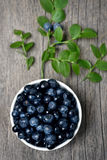 Fresh blueberries in bowl, top view Royalty Free Stock Image