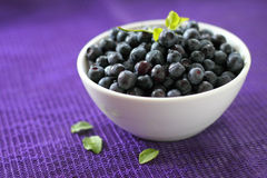 Fresh blueberries in a bowl Royalty Free Stock Photo