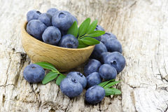 Fresh blueberries in a bowl Royalty Free Stock Image
