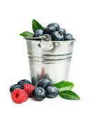 Fresh blueberries in a bucket. Isolated on white Royalty Free Stock Images
