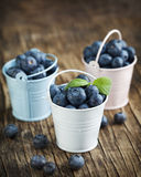 Fresh Blueberries in bucket Royalty Free Stock Image