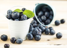 Fresh Blueberries in bucket. On wooden background Stock Image