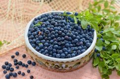 Fresh bilberry. Fresh blueberries in a clay bowl. Нealthy nutrition Royalty Free Stock Image