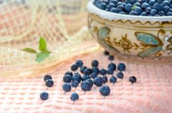 Fresh bilberry. Fresh blueberries in a clay bowl. Нealthy nutrition Royalty Free Stock Photo
