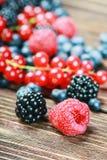 Fresh blueberries, currants, blackberries, cranberries and raspb Stock Image