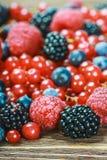 Fresh blueberries, currants, blackberries Stock Image