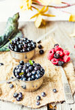 Fresh blueberries, currants and raspberries in the metallic plat. Es, autumn rustic background Stock Images
