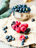 Fresh blueberries, currants and raspberries in the metallic plat. Es Stock Photography