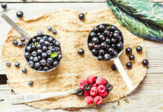 Fresh blueberries, currants and raspberries, rustic, top view Royalty Free Stock Images