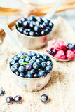 Fresh blueberries, currants and raspberries,selective focus, rus. Fresh blueberries, currants and raspberries in the metallic plates, selective focus Royalty Free Stock Photo