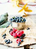 Fresh blueberries, currants and raspberries,selective focus, rus. Fresh blueberries, currants and raspberries in the metallic plates, selective focus Royalty Free Stock Image