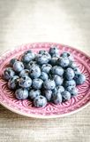 Fresh blueberries on the decorated plate Royalty Free Stock Image