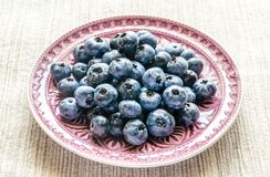 Fresh blueberries on the decorated plate Royalty Free Stock Photos