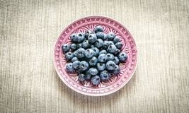 Fresh blueberries on the decorated plate Stock Photos