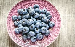 Fresh blueberries on the decorated plate Stock Images