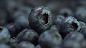 Fresh blueberries extreme close-up, slow motion, macro footage. stock footage