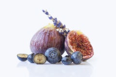Fresh blueberries and figs  and a sprig of lavender Stock Images