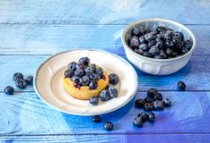 Fresh berries and a butter berry cake dessert. Fresh blueberries  flank a blueberry butter cake dessert on a rustic blue plank background Royalty Free Stock Photography