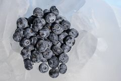 Fresh blueberries are frozen on cold blue ice. Stock Image