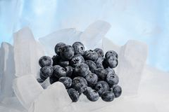 Fresh blueberries are frozen on cold blue ice. Royalty Free Stock Photos