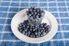 Fresh Blueberries in Glass Cup on White Plate Stock Photography