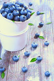 Fresh blueberries. In a glass on a wooden background Stock Image