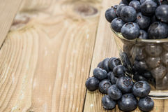 Fresh Blueberries in a glass Stock Images