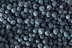 Fresh blueberries, group of blueberries stock photos