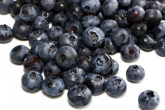 Fresh Blueberries - in Heap Royalty Free Stock Photos