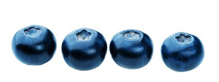 Fresh blueberries isolated Royalty Free Stock Images