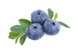 Fresh Blueberries isolated on white Royalty Free Stock Photography