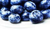 Fresh Blueberries  isolated on white background macro. Blueberry Stock Image