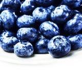 Fresh Blueberries  isolated on white background macro. Blueberry Royalty Free Stock Images