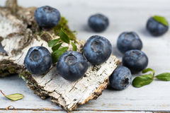 Fresh blueberries with leaves on birch bark, closeup Stock Images
