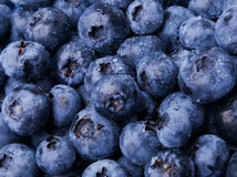 Fresh blueberries. A lot of fresh blueberries close-up Stock Photography