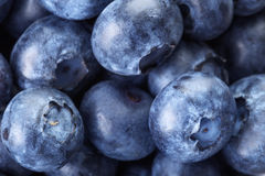 Fresh blueberries macro Royalty Free Stock Photography
