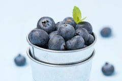 Fresh blueberries in a metal bucket, selective focus Royalty Free Stock Images