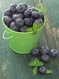 Fresh blueberries. In the metallic green bucket, top view Royalty Free Stock Images