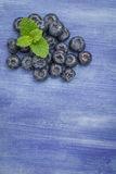 Fresh blueberries and mint leaf Royalty Free Stock Images