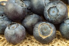 Fresh blueberries on old wooden table. Homework marmalade. Healthy forest fruit. Nutrition for athletes. Stock Photography