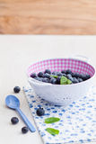 Fresh blueberries. In a plastic colander with a spoon royalty free stock photo