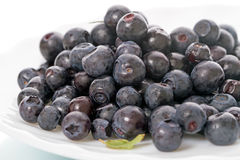 Fresh blueberries on a plate Stock Photo