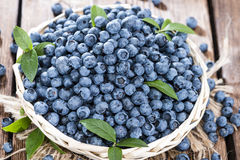 Fresh Blueberries. Portion of fresh harvested Blueberries (detailed close-up shot Stock Photography