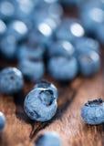 Fresh Blueberries. Portion of fresh harvested Blueberries (detailed close-up shot Stock Image